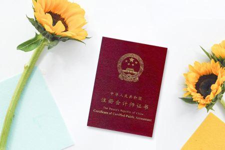 2019注册会计师考试《税法》试题及答案(4)