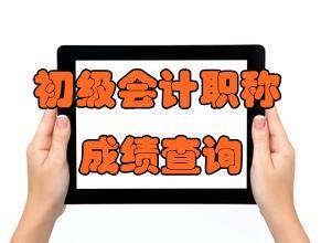 2020年天津初级会计职称考试成绩何时公布?