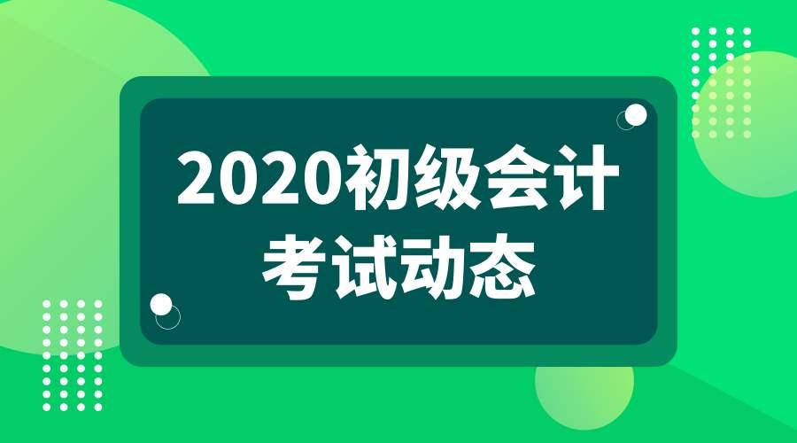 2020年初级会计《初级会计实务》考试大纲