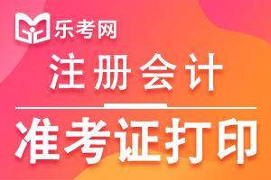 河北省2020年注册会计师准考证打印预计时间